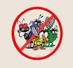 ICI Termite and Pest Control: 3240 Recker Hwy, Winter Haven, FL