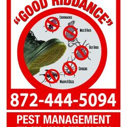 Pest Control In Chicago Yelp