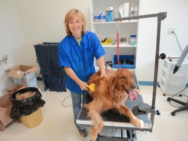 Happy Tails Pet Grooming: N7894 State Hwy 42, Sheboygan, WI