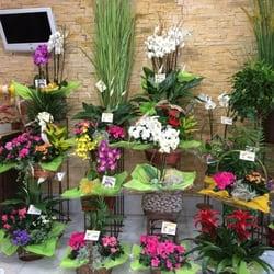 El Jardín de la Abuela - 31 Fotos - Blumenladen & Florist ...