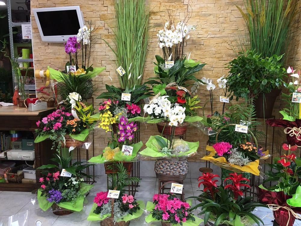 cestas de plantas y flores en el Jardín de la Abuela - Yelp