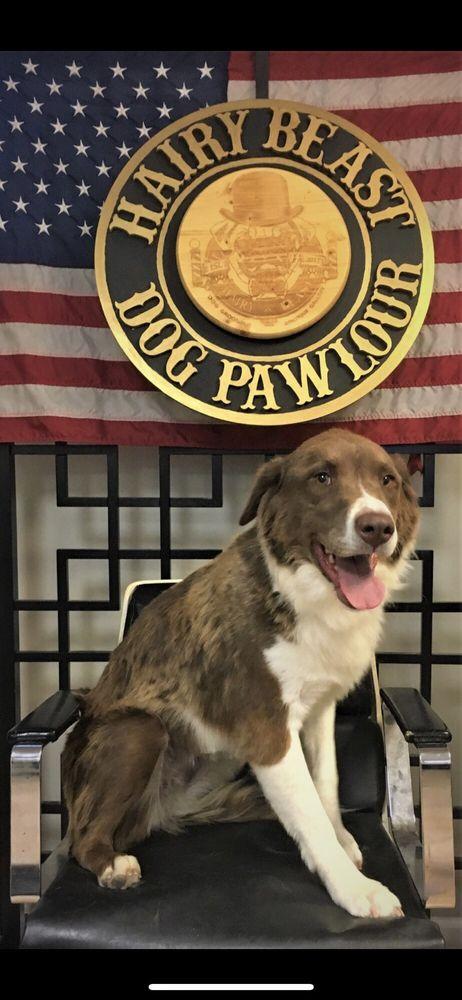 Hairy Beast Dog Pawlour: 215 W Galena Blvd, Aurora, IL