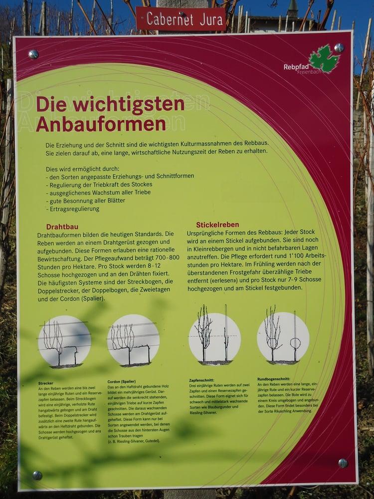 Photos for Leutschenweg - Yelp