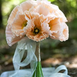 The crimson poppy get quote bridal 1520 e frontier dr photo of the crimson poppy stillwater ok united states extraordinary paper flower mightylinksfo
