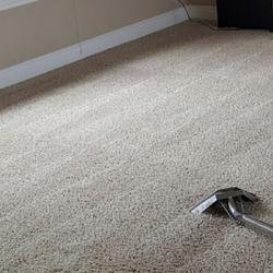 Photo Of Bravo Carpet Cleaning Services Mount Vernon Wa United States