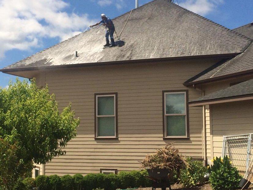 Buena Vista Landscaping Maintenance: Salem, OR