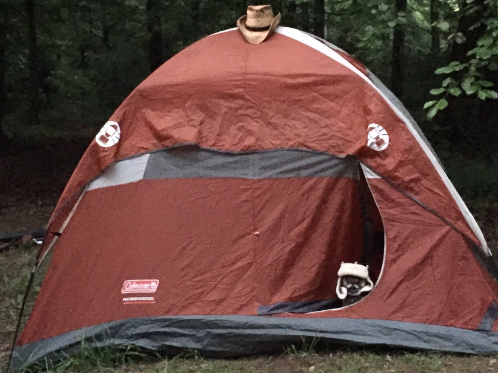 Wakarusa Music and Camping Festival: 4117 Mulberry Mountain Lp, Ozark, AR