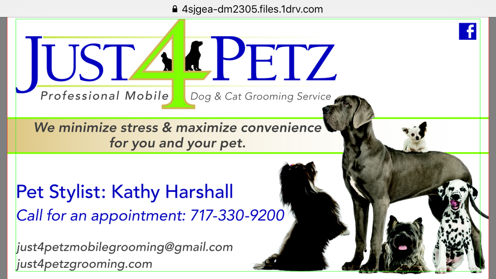 Just 4 Petz Mobile Grooming: Serving General Area, York, PA