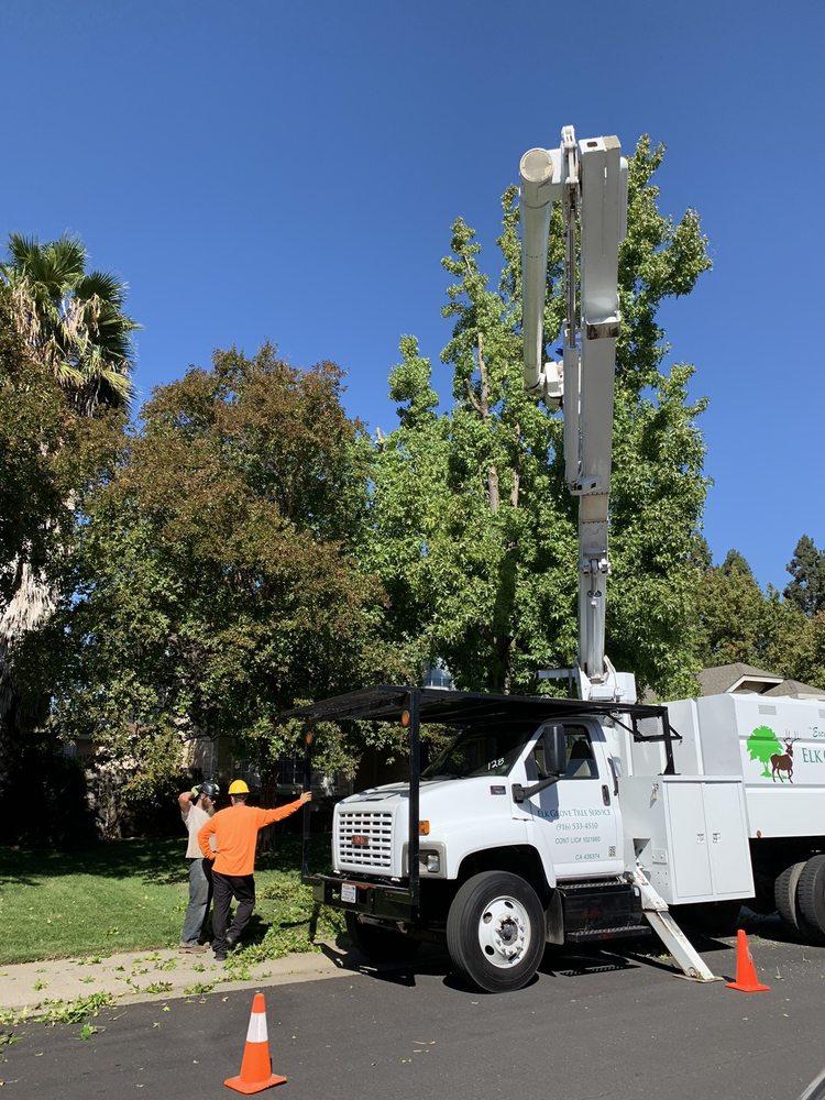 Elk Grove Tree Service