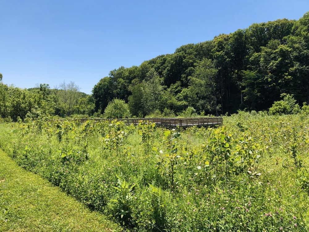 McCloud Nature Park: 8518 Hughes Rd, North Salem, IN