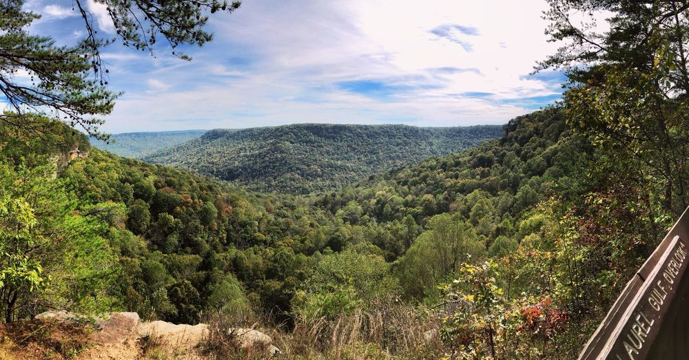 South Cumberland State Park: 11745 US 41, Monteagle, TN