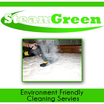 Steam Green Services: 6040 E Walnut St, Westerville, OH