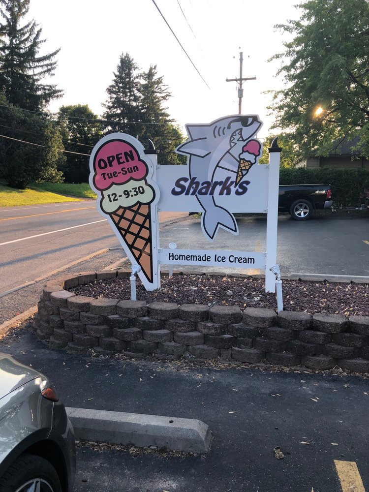 Sharks Custard & Candy: 50 State St, Bloomfield, NY