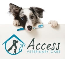 Access Veterinary Care: 5012 1/2 Hwy 62, Jeffersonville, IN