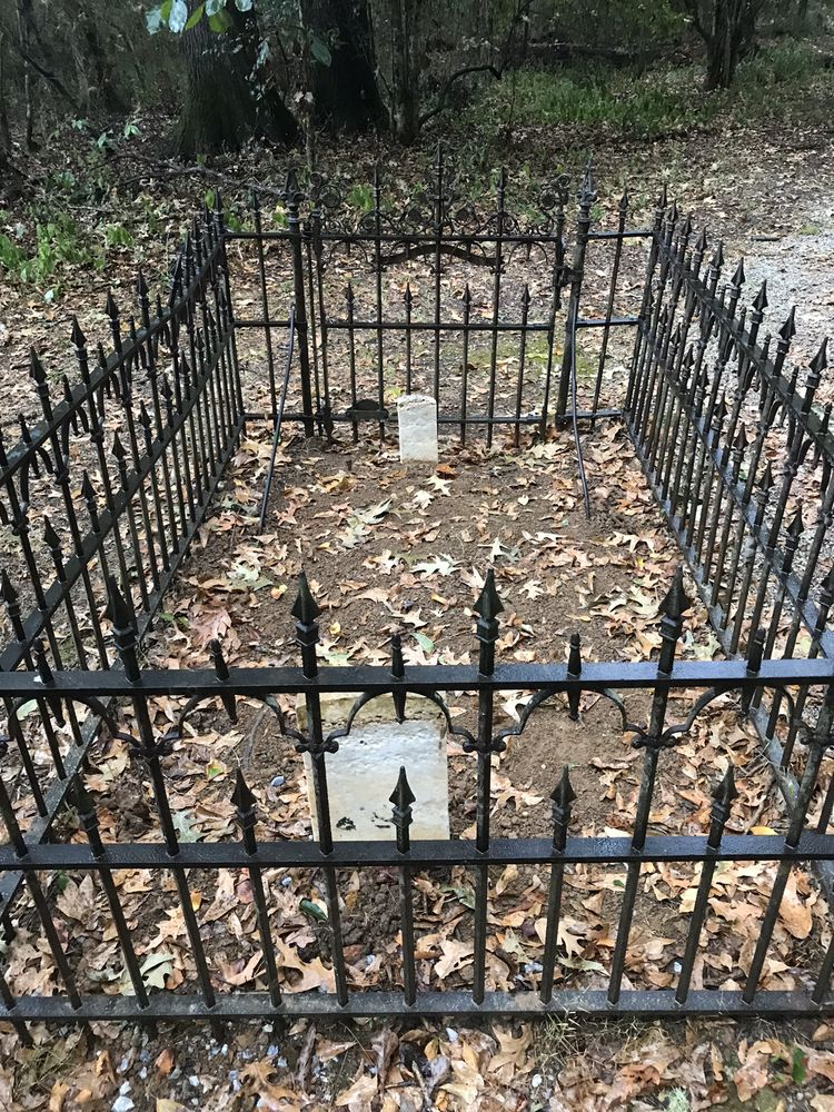 Old Cahawba Archaeological Park: 9518 Cahaba Rd, Orrville, AL