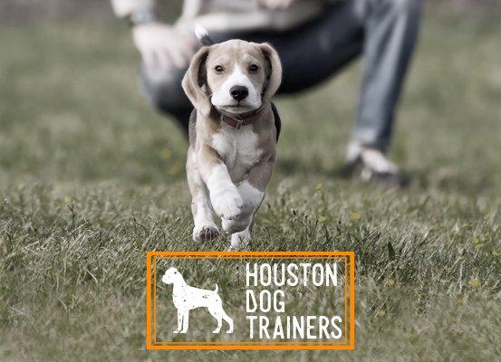 Houston Dog Trainers: 616 E 12th & 1/2 St, Houston, TX