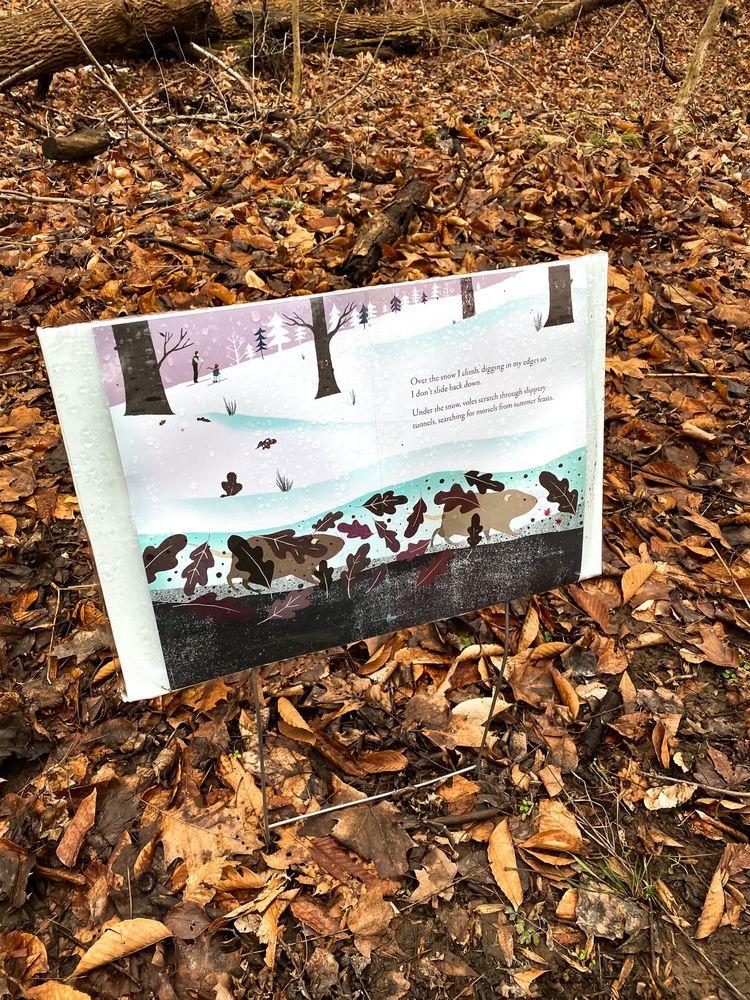 Hayes Regional Arboretum: 801 Elks Rd, Richmond, IN