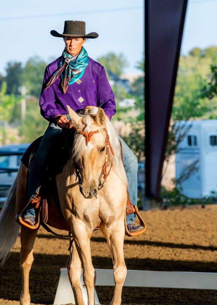 Purple Sage Equine Horse & Rider Training: Minden, NV
