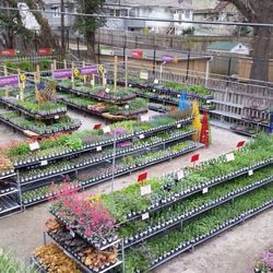 Photo Of Soil Service Garden Center Kansas City Mo United States