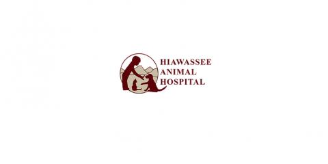 Hiawassee Animal Hospital