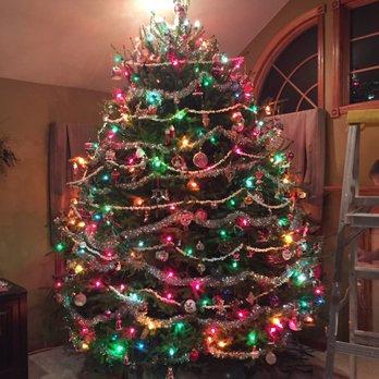 Photo of Mansfield Christmas Tree Farm - Columbus, NJ, United States - Mansfield Christmas Tree Farm - Christmas Trees - 3202 Rt 206