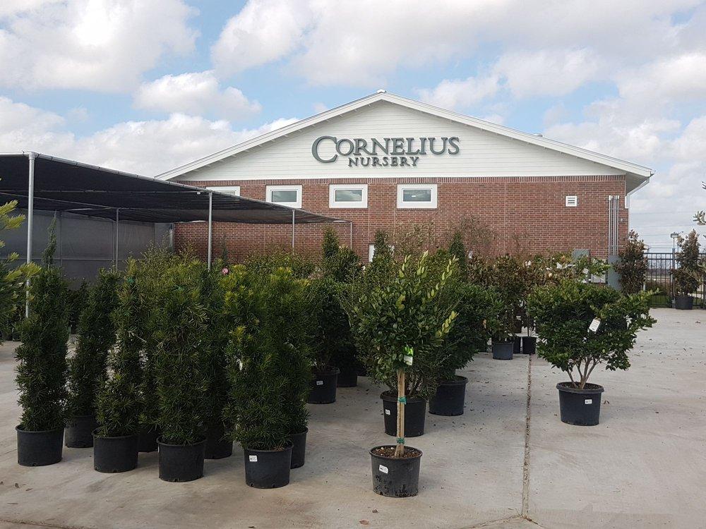 Cornelius Nursery: 6720 US-90 Alt, Sugar Land, TX