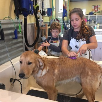 Soapys dog wash 31 photos 29 reviews pet groomers 3060 e photo of soapys dog wash apopka fl united states oh so good solutioingenieria Choice Image