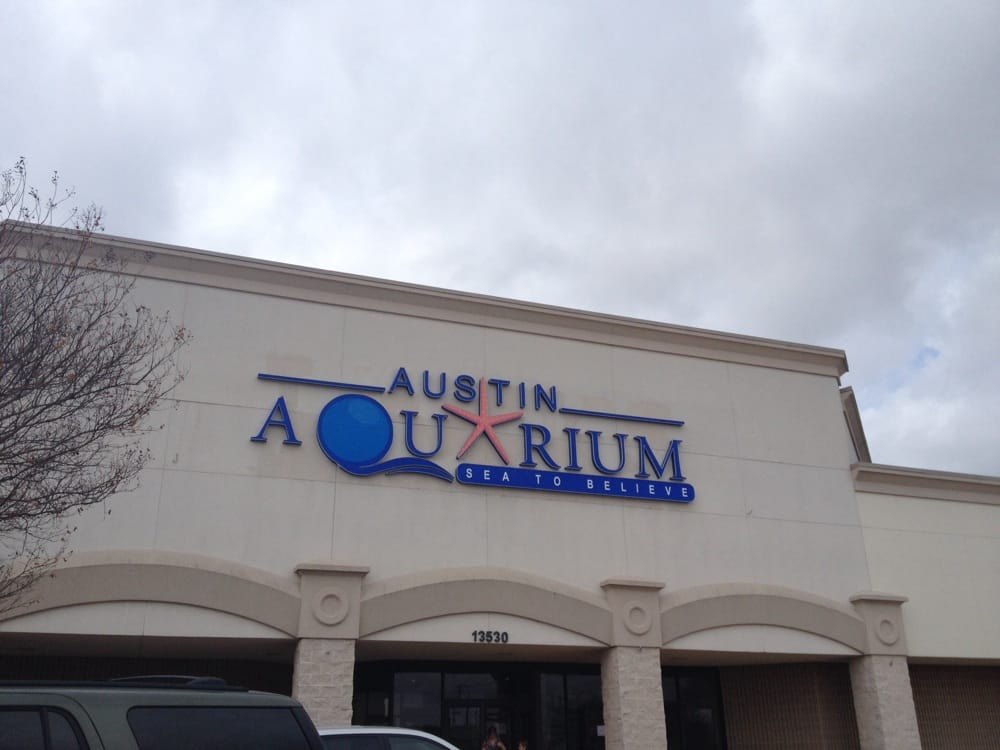 Welcome To The Strip Mall Aquarium Located Right Next To