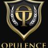 Opulence Transportation: 999 Waterside Dr, Norfolk, VA