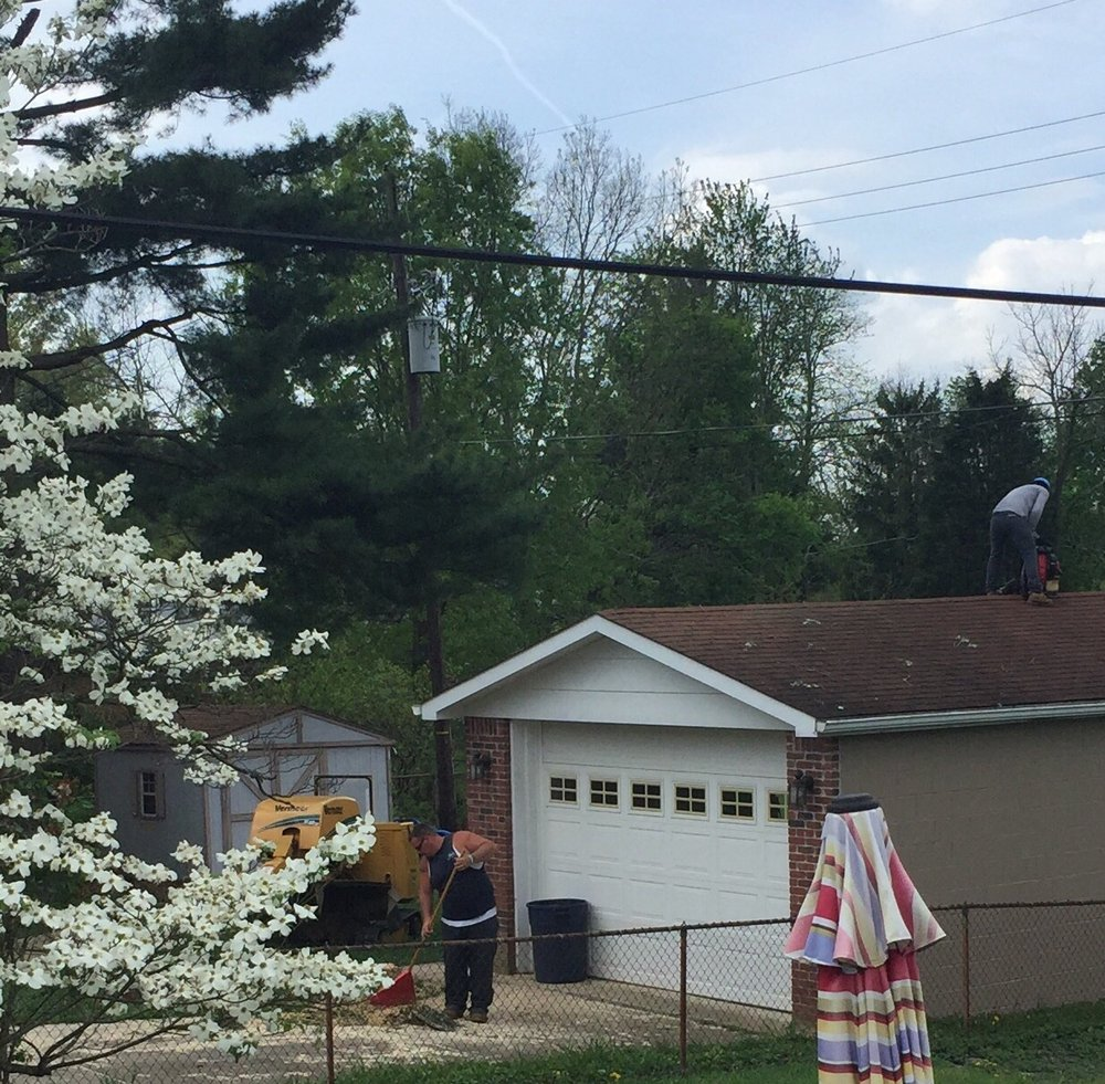 All In One Tree Service: Crestwood, KY