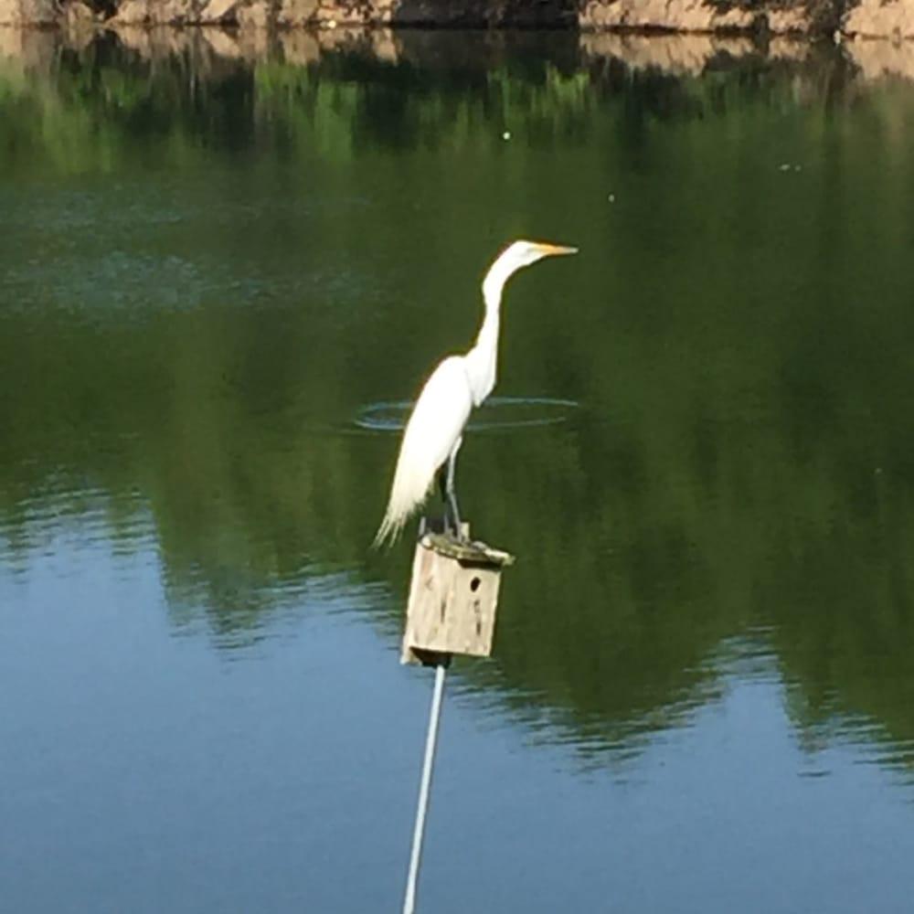 Aquatone Pool Care: Lakeland, FL