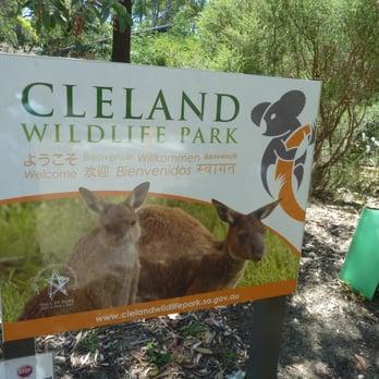 Cleland Wildlife Park 55 Photos 13 Reviews Coffee Tea Shops
