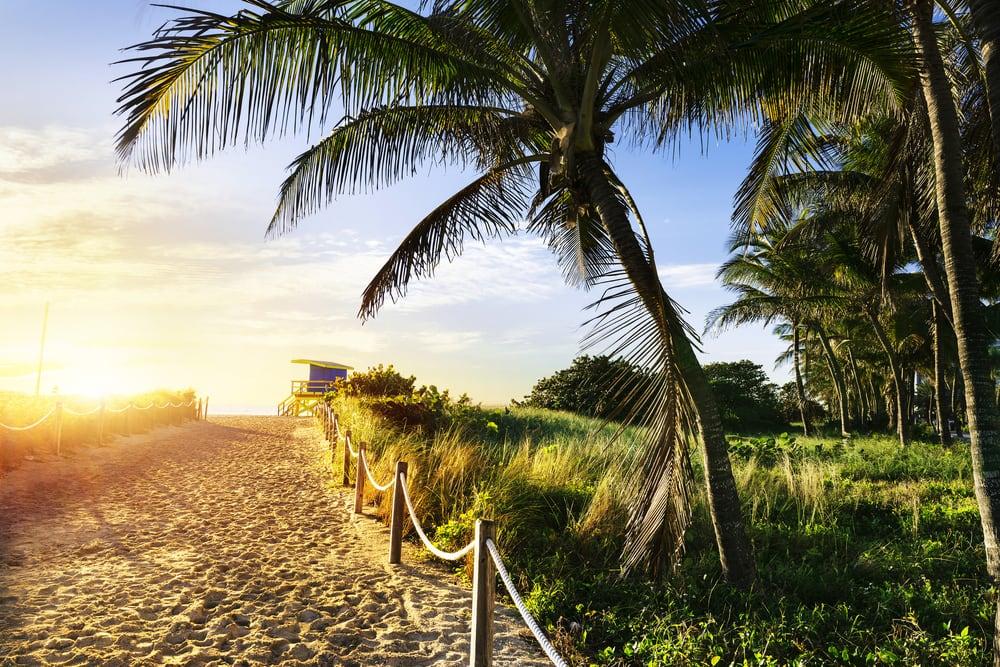 Samuel J Holcroft Dmd 13 Fotos Dentistas Cosm Ticos 2560 Rca Blvd Palm Beach Gardens Fl