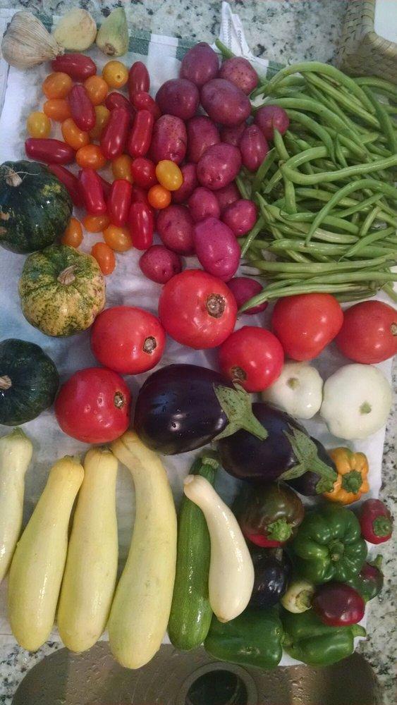 San Antonio's Farmers Market
