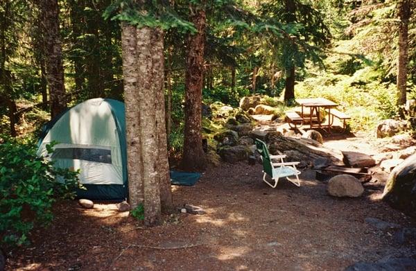 Cougar Life Reviews >> Cougar Rock Campground - Parks - Ashford, WA - Reviews - Photos - Yelp