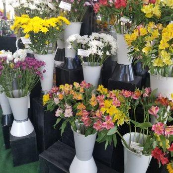 564e7be9aa5e2b 710 Flower Shop - 39 Photos   30 Reviews - Florists - 690 W Willow ...