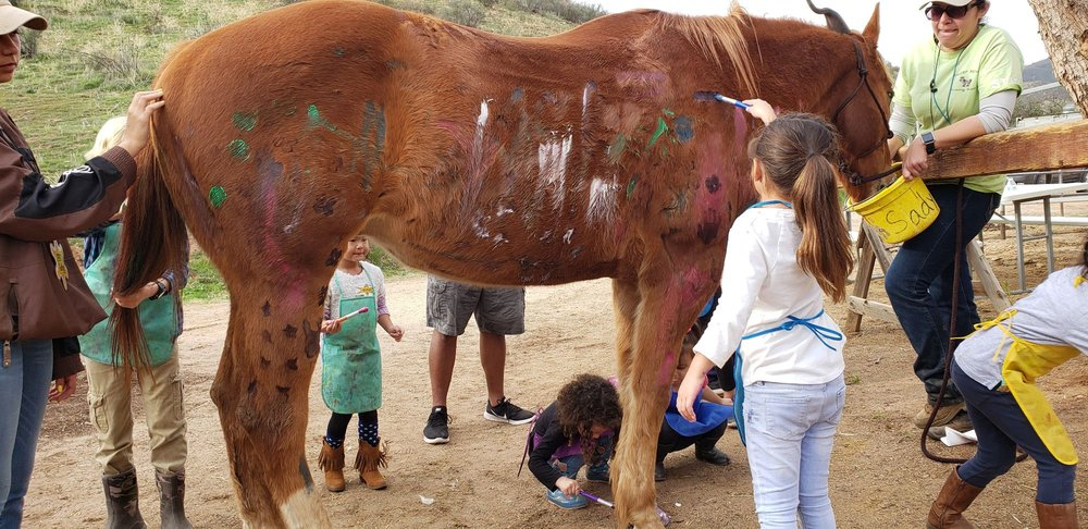 Copper Horse Riding Ranch: 12435 W Doebay Dr, Santa Clarita, CA