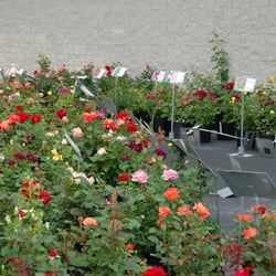 Photo Of Grant Line Nursery Garden Center New Albany In United States