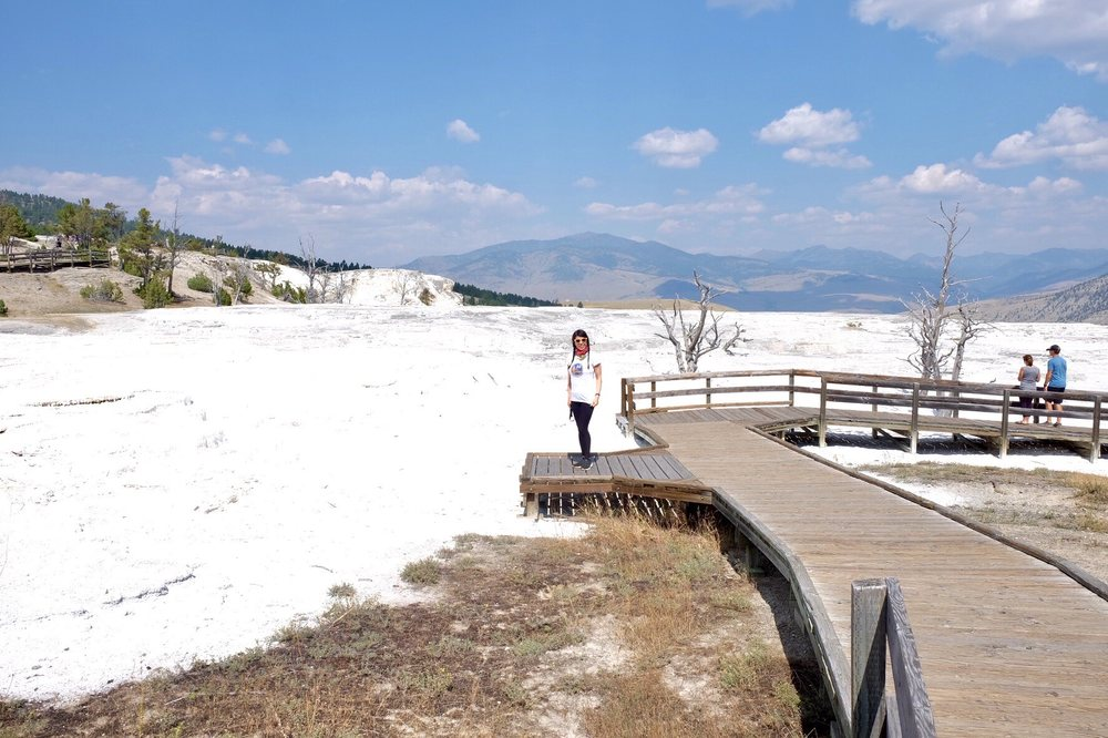 Mammoth Hot Springs Terraces: Beaver Ponds Trl, Yellowstone National Park, WY