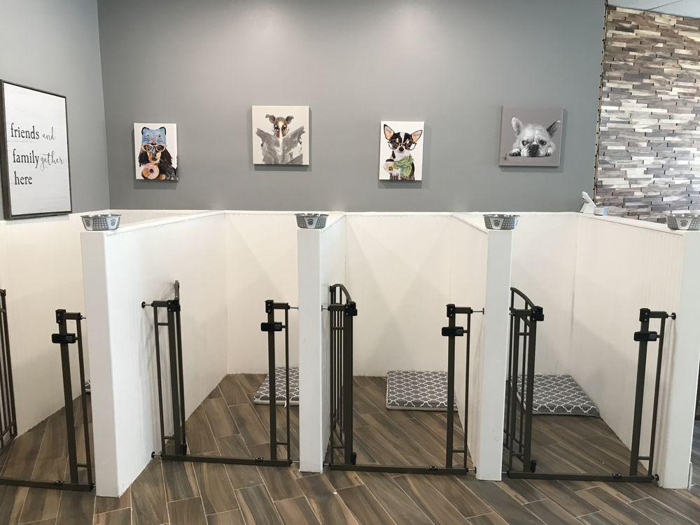 City Dog Spa & Boutique: 551 Valley Rd, Montclair, NJ
