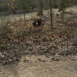 Photo Of Beavers Bend Lodging Broken Bow Ok United States Friendly White