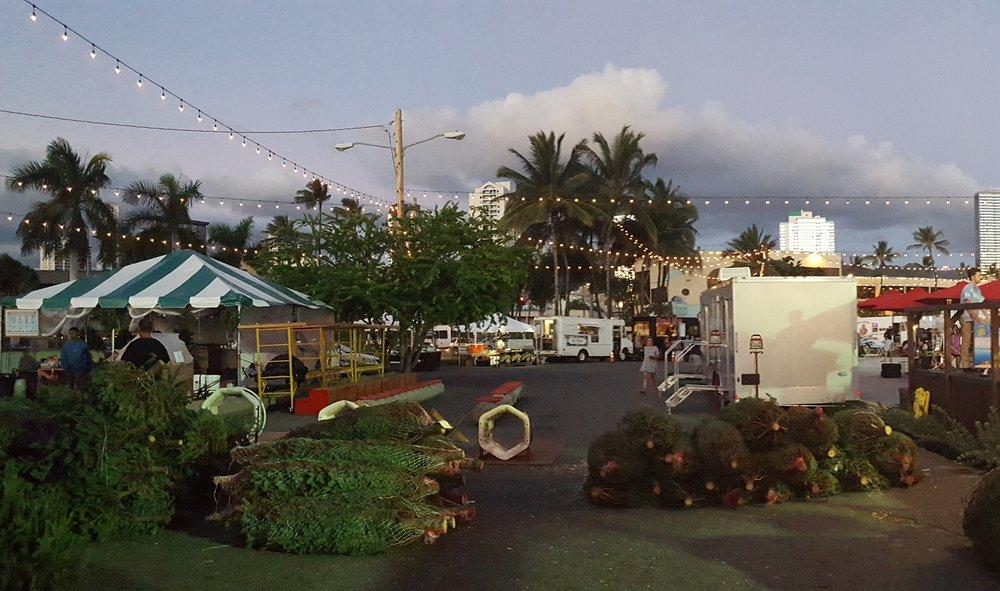 Habilitat Christmas Trees: 45-035 Kuhonu Pi, Kaneohe, HI