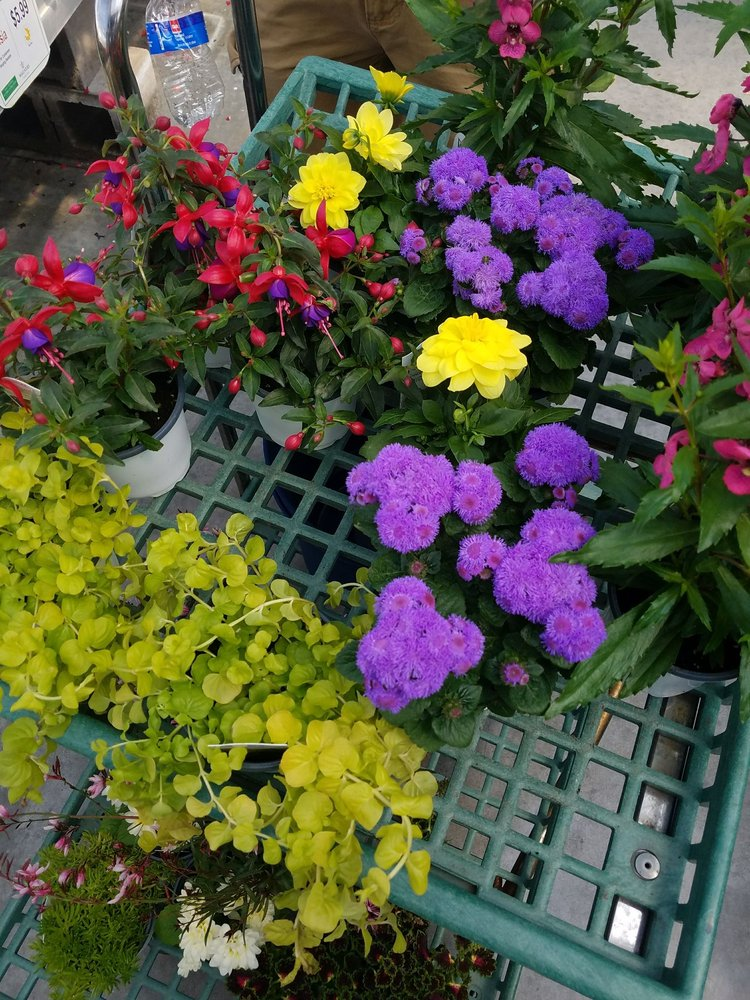 Wagners Garden Center - Hugo: 4860 Frenchman Rd, Hugo, MN