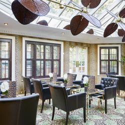 Photo Of The Montague On The Gardens   London, United Kingdom. The Leopard  Bar Images