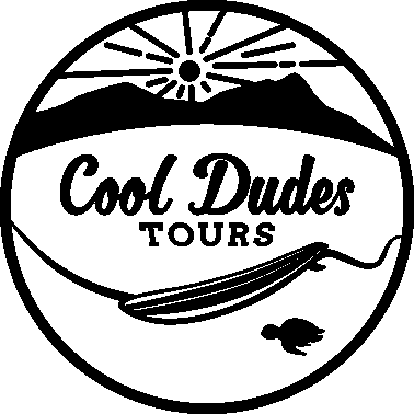Cool Dudes Tours