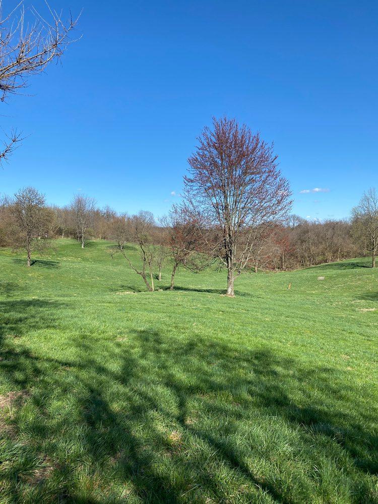 Embshoff Woods: 4050 Paul Rd, Cincinnati, OH