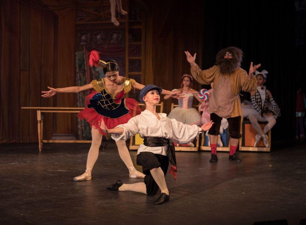 Kintz-Mejia Academy of Ballet: 1524 Spring Hill Rd, Mc Lean, VA