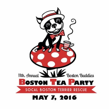 boston buddies annual tea party and fundrsiser 110 photos pet