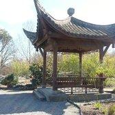 photo of seattle chinese garden seattle wa united states pine and plum - Seattle Chinese Garden