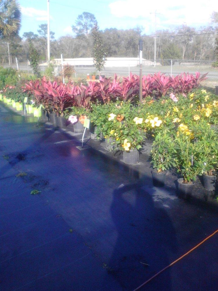 Photo Of Gulf Coast Landscaping U0026 Supply LLC/Wakulla Sod And Nursery    Crawfordville,